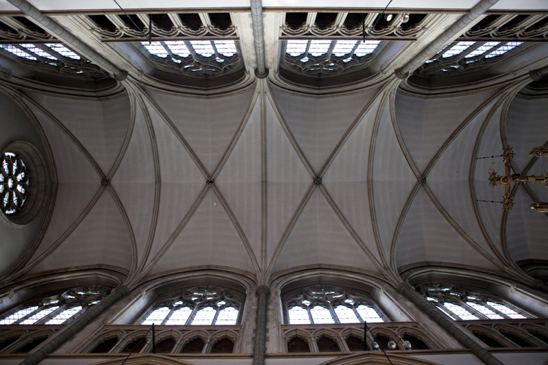 Vaulted nave ceiling